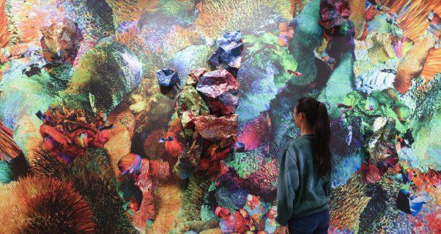 José Carlos Casado exhibition in Nueva York